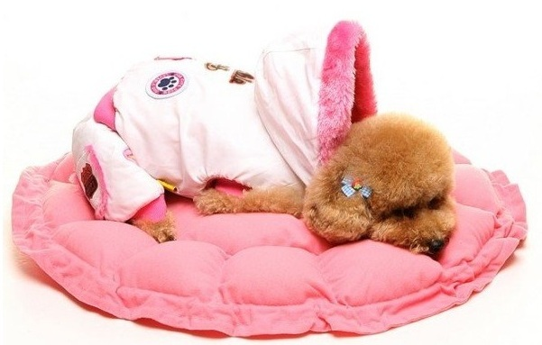 Peaks Water Resistant Dog Bed
